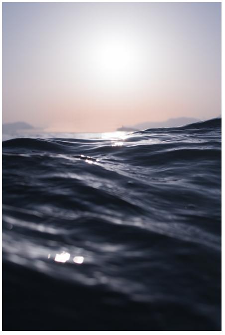 sjoed_logo
